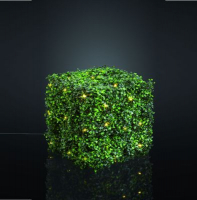 Hellum LED-Buchsbaum Würfel warmweiß außen