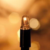 Weihnachtskette, Chrissline Combi, 50 Glühlampen